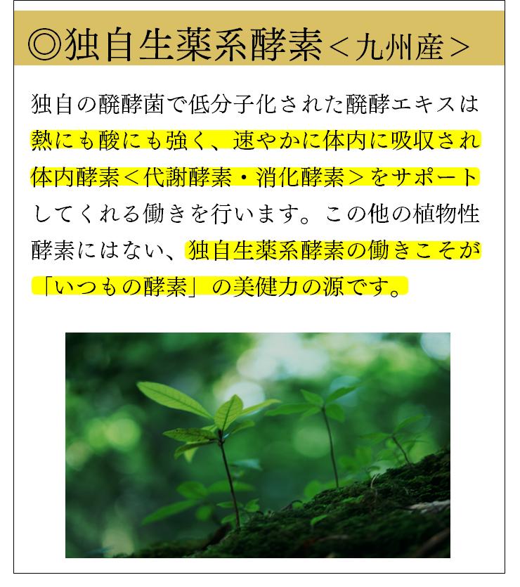 独自生薬系酵素<九州産>