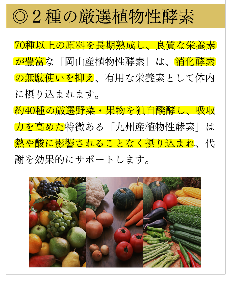2種の厳選植物性酵素<九州産+岡山産>