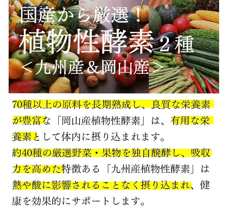 国産から厳選 植物性酵素2種<九州産&岡山産>