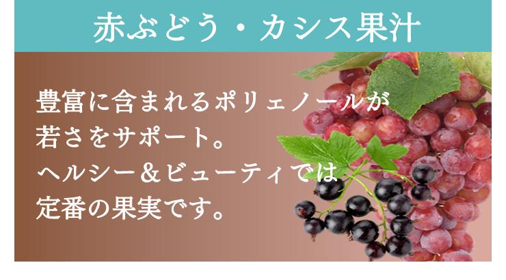 赤ぶとう・カシス果汁